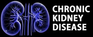 Chronic Kidney Problem Chronic Kidney Disease (CKD)
