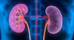 Chronic Kidney Disease - CKD